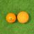左:ミニボール 右:オフィシャルラクロスボール